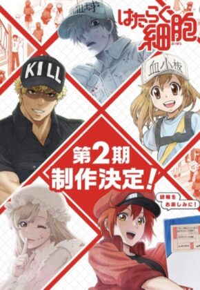 Hataraku Saibou!! 2nd season